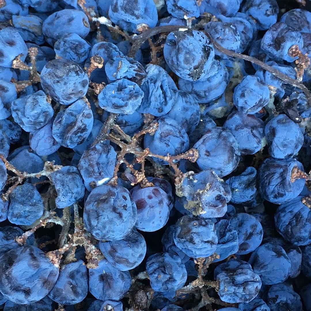 Богатство Ca'Botta заизюмленный виноград для Amarone