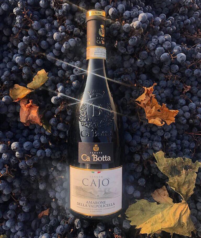 Любимое вино Хэмингуэя? Амароне  TENUTA CAJO' AMARONE DELLA VALPOLICELLA Вино темно-рубинового цвета с фиолетовым оттенком, почти чёрное.  Изобилует сильными и невероятно длинными тонами ежевики и вишни, увенчанных нотами зелёного перца, темного шоколада, тимьяна, розмарина, луговых цветов и мёда с дымным оттенком. Вкус такой же плотный и богатый, как и букет, с горькими нотками миндального ликера на финише. Это прекрасно сбалансированное и очень запоминающееся вино