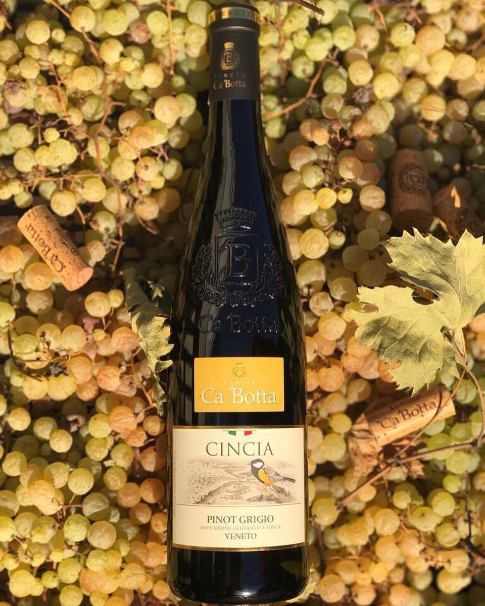 CINCIA ?? Фруктовое сухое вино, изготовленное по фирменному рецепту винодельни Ca'Botta — с использованием техники appassimento  Сложное, элегантное вино. Богатый фруктовый вкус, оттенки лимона, печёных яблок и ноты цветов акации. Гармоничное, свежее, достаточно интенсивное cincin