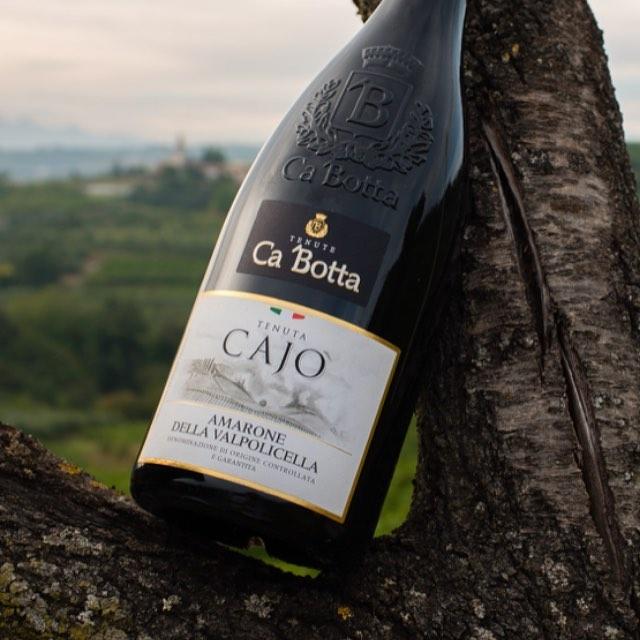 Самое замечательное чаще всего происходит случайно. Так, одно из главных вин Вальполичеллы — Амароне, тоже появилось благодаря случаю. Однажды винодел забыл одну из бочек десертного Речото (которое делают из заизюмленных ягод) в погребе. Через некоторое время бочка была обнаружена, и, попробовав содержимое, винодел вынес вердикт «amarone», что в переводе с итальянского обозначает «очень очень горькое». Случилось это в начале ХХ века, но настоящая слава к Амароне пришла в пятидесятых годах, когда виноделы распробовали напиток и почувствовали его потенциал. В 1968 году производство амароне было закреплено в рамках винной зоны DOC Valpolicella, а в 2010 году получило статус DOCG Amarone Della Valpolicella.  На винодельне Ca'Botta производится уникальное Амароне — авторское красное сухое вино из вяленого винограда, ферментация которого происходит в запатентованном резервуаре Fermentino Ca'Botta®, что придаёт напитку уникальные характеристики.